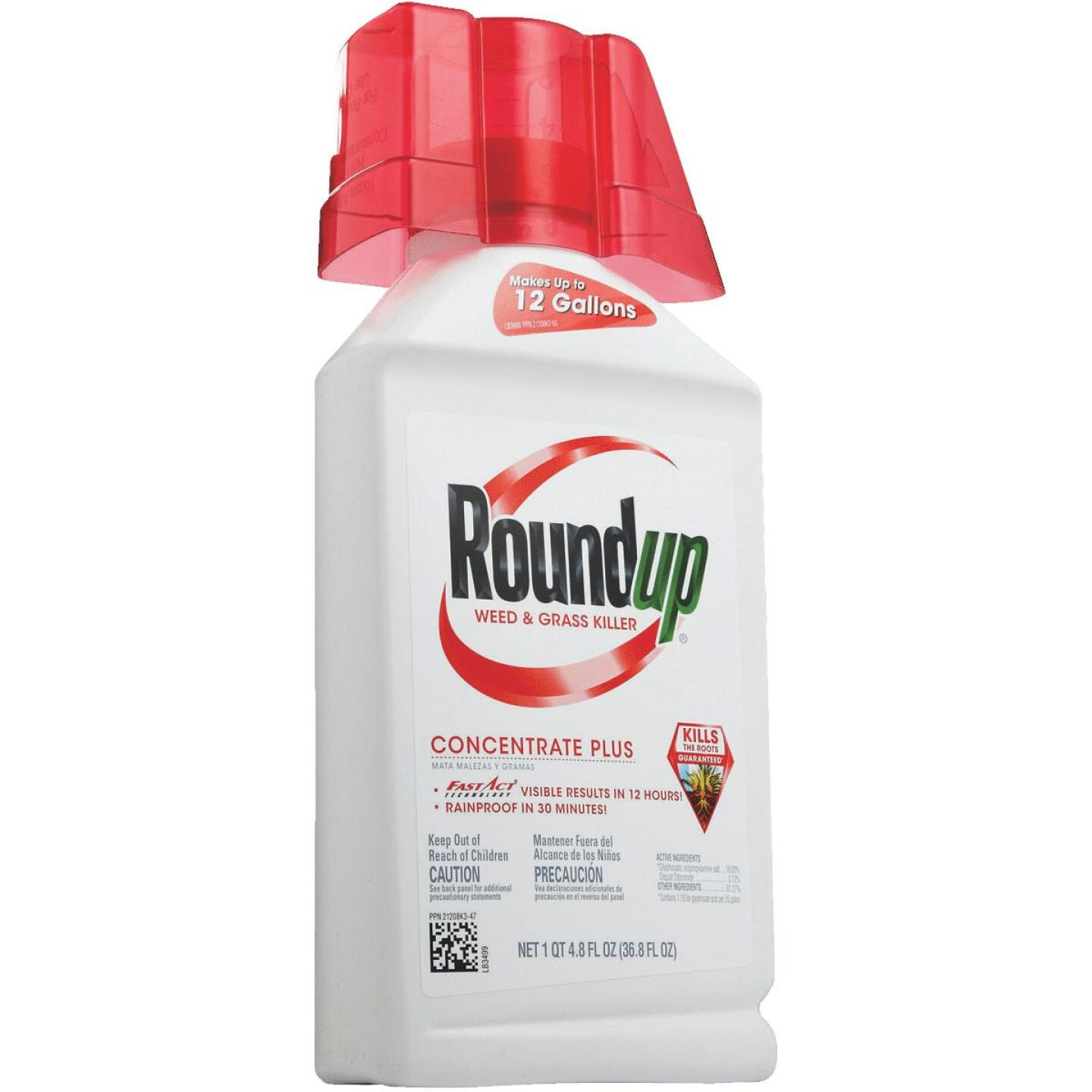 Roundup 36.8 Oz. Concentrate Plus Weed & Grass Killer Image 3