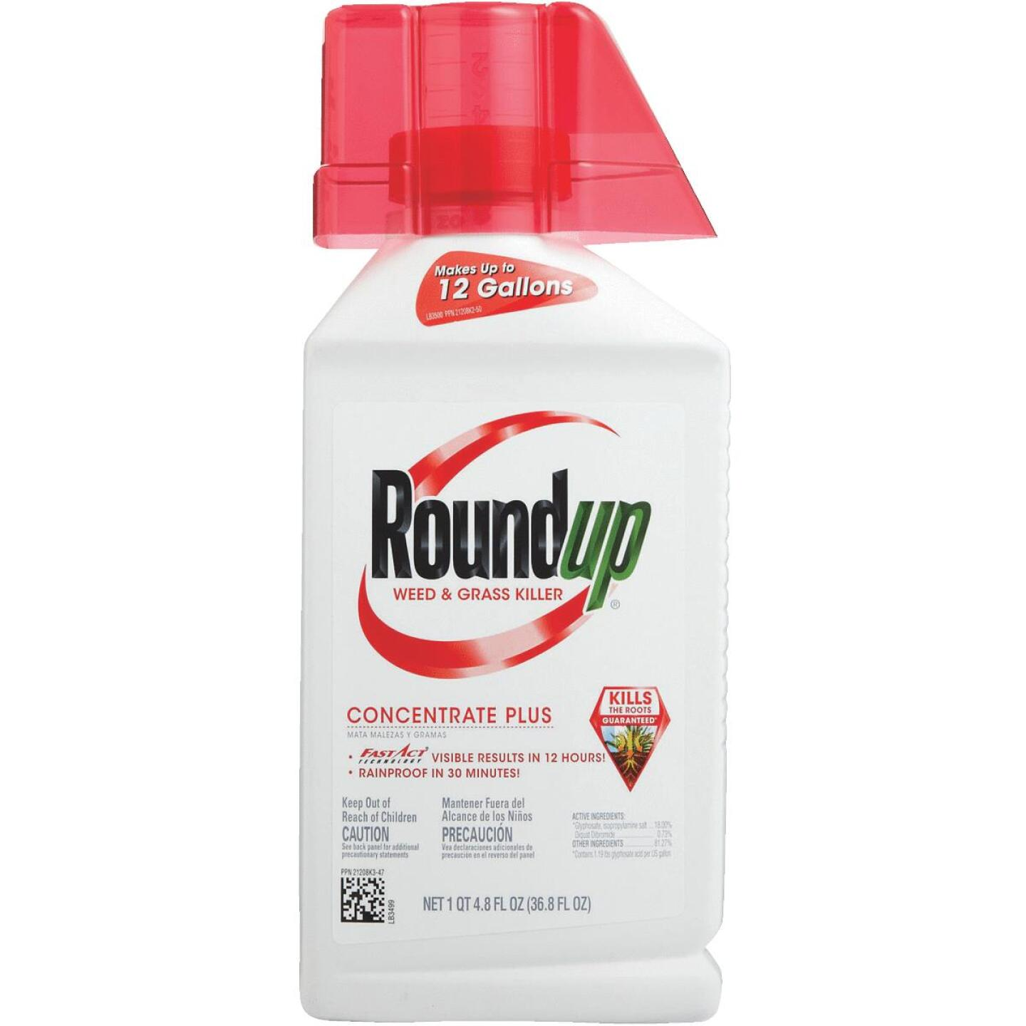 Roundup 36.8 Oz. Concentrate Plus Weed & Grass Killer Image 5