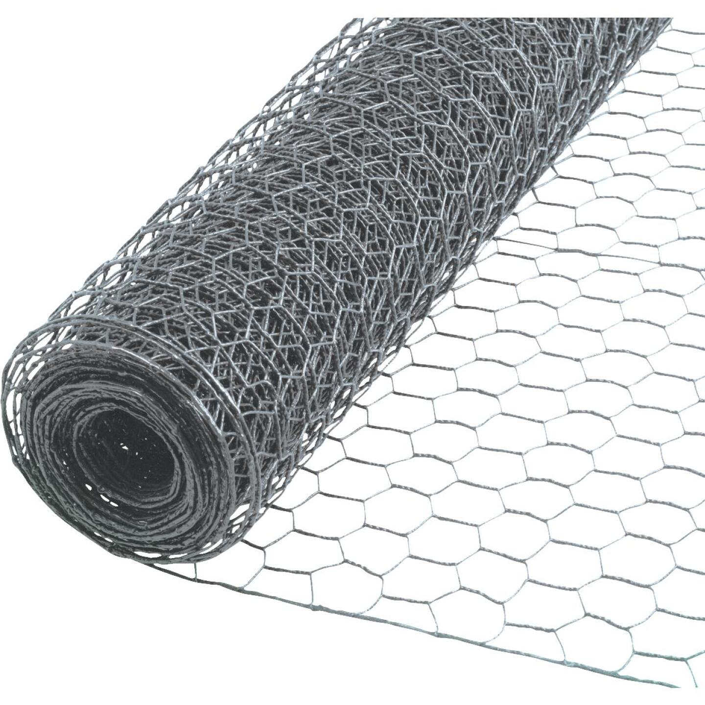 Do it 1 In. x 36 In. H. x 25 Ft. L. Hexagonal Wire Poultry Netting Image 1